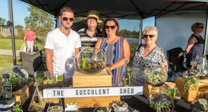 The Succulent Shed
